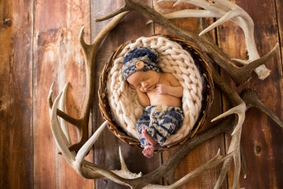 Baby in the Antlers