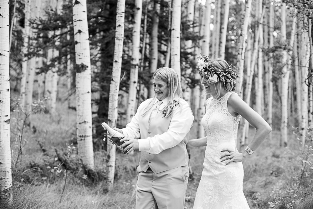 20 South Fork Wedding elope